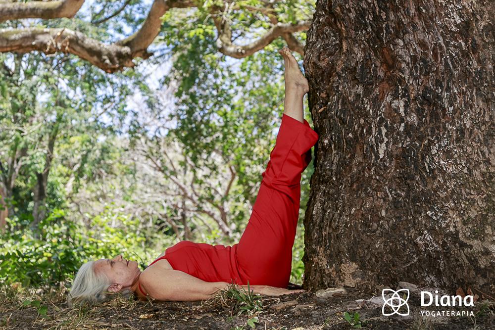Yogaterapia para Vitalização Hormonal - Diana Suassuna