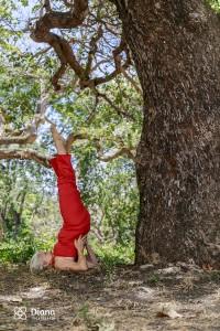 Diana-Suassuna-Yoga-43